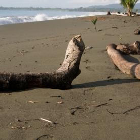 Osa Beach